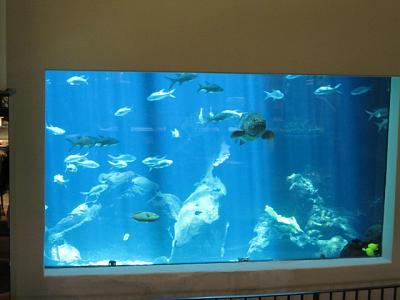 2012年7月25日〜30日ハワイ 021.jpg