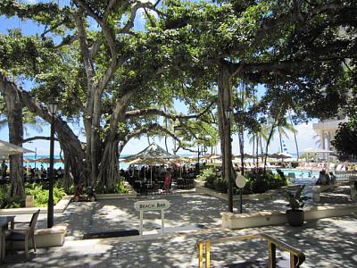 2012年7月25日〜30日ハワイ 102.jpg